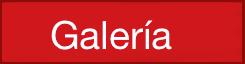 Galería TEDxQuito 2016